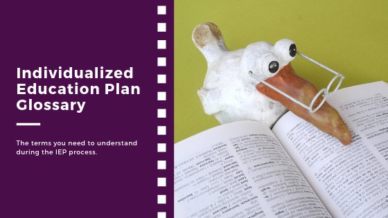 Individualized Education Plan (IEP) Glossary